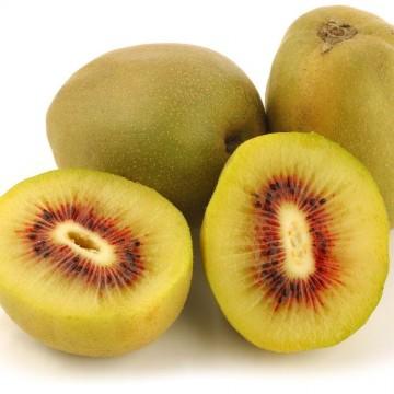 ACTINIDIA deliciosa Kiwi wonder(r)