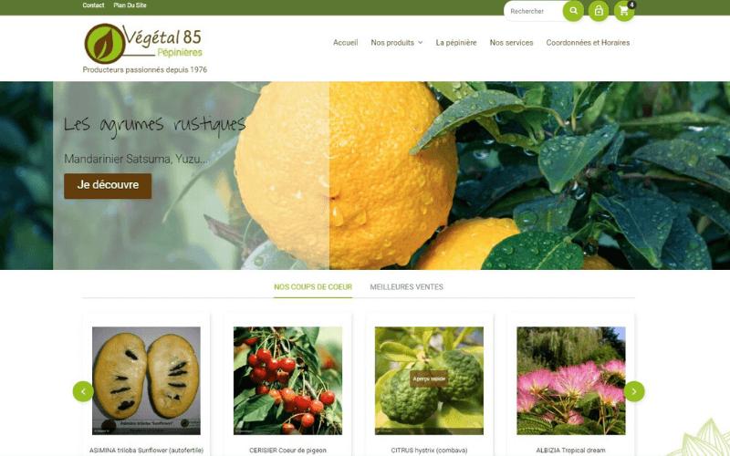 Vente en ligne - Pépinière Végétal 85